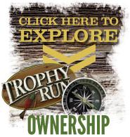 Explore Ownership